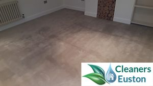 carpet cleaning euston